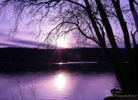 purple sky cw