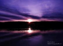 purple sunset cw