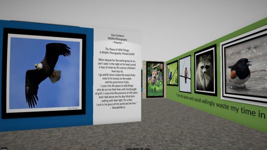 Virtual Exhibit Cover